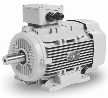 Motor Polumschaltbar 4,4/1,1KW - 3000/1500Upm